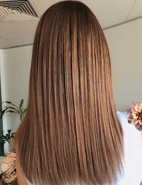 What color highlights for light brown hair brown hairs hair heavy light brown highlights pmusecretfo Images