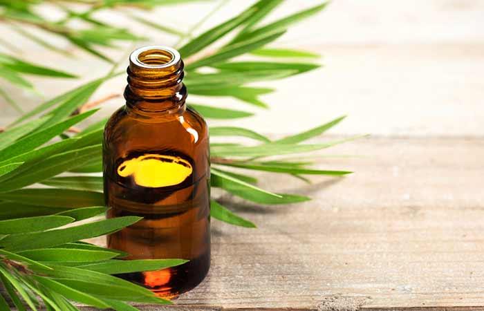 8. Tea Tree Oil