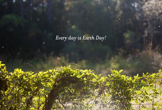 OLO_041712_EarthdayBees4