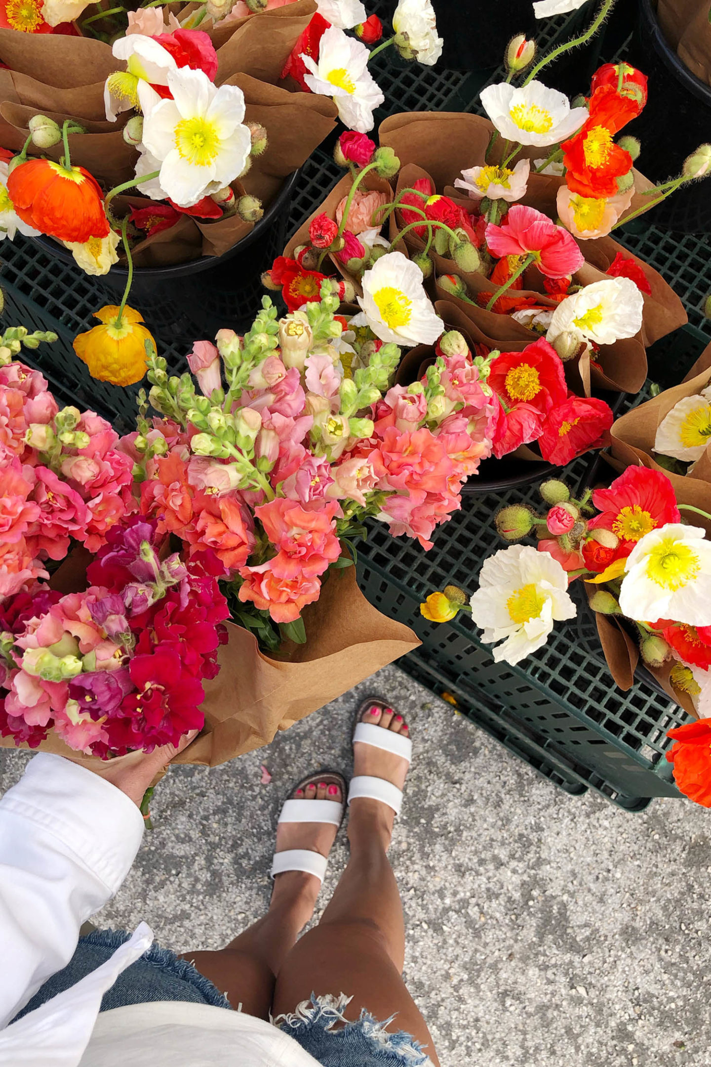 Sam Edelman Gala Sandals White Spring Sandal Season
